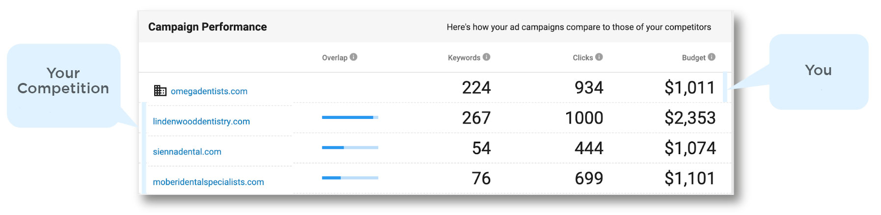 PPC Campaign Performance Review
